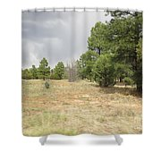 Show Low Landscape Shower Curtain