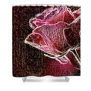 Silent Places Shower Curtain