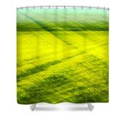 Skagit Valley Daffodils Shower Curtain