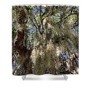 Spanish Moss Shower Curtain