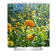 Spring Flowers In The Rain Shower Curtain