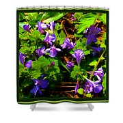 Spring Time Series Shower Curtain