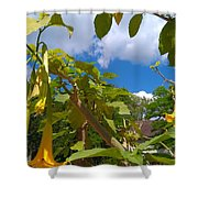 Spring Yellow Flowers Shower Curtain