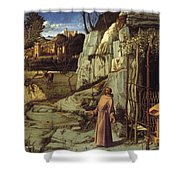 St. Francis In The Desert Shower Curtain