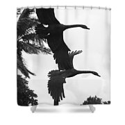 Stone Birds Shower Curtain