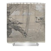 Study For The Unruly Calf Shower Curtain