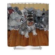 Stuffed Animals Shower Curtain