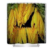Sunflower 1134 Shower Curtain