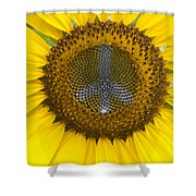 Sunflower Peace Sign Shower Curtain