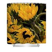 Sunflower Power Shower Curtain