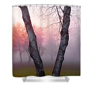 Sunrise Trees Fog Shower Curtain