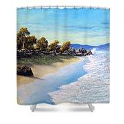 Surf Surge Shower Curtain
