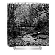 Swan Creek Park Shower Curtain