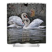 Tango Of The Swans Shower Curtain