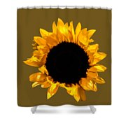 Sunflower Stretching On Brown Shower Curtain