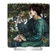 The Day Dream Shower Curtain