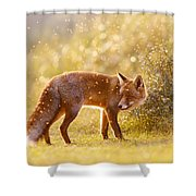 The Fox And The Fairy Dust Shower Curtain