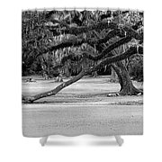 The Giving Tree Shower Curtain