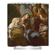 The Penitent Magdalen Shower Curtain