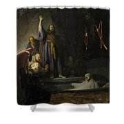 The Raising Of Lazarus Shower Curtain