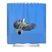 The Sky Is My Limit Shower Curtain