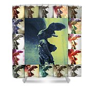 The Winged Victory - Paris - Louvre Shower Curtain by Marianna Mills