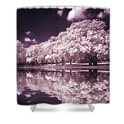 Trees At The Carabobo Field Shower Curtain
