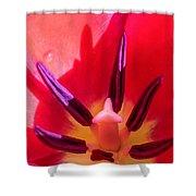 Tulip Porn Shower Curtain