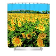 Tuscany Sunflowers Shower Curtain