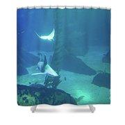 Underwater Blue Background Shower Curtain
