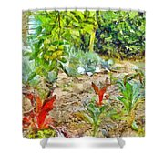 Vegetable Garden Shower Curtain