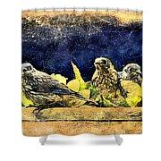 Vintage Bluebird Print Shower Curtain