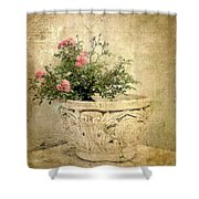 Vintage Still Life Shower Curtain