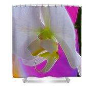 Vivid Joy Shower Curtain