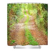 Walkway In Secluded Deciduous Forest Shower Curtain