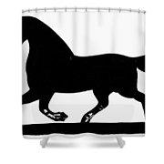 Weathervane, 19th Century Shower Curtain