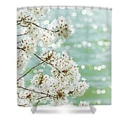 White Cherry Blossoms Trees Shower Curtain
