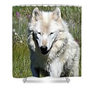 White Lady Shower Curtain
