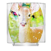 White-tailed Virginia Deer Fawn Shower Curtain