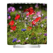 Wild Flowers And Red Poppies Shower Curtain