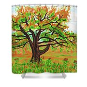 Willow Tree, Painting Shower Curtain