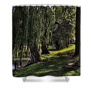 Willows And Oaks Shower Curtain
