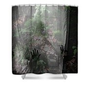 Window Wonder Shower Curtain