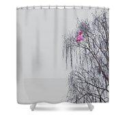 Winter Shower Curtain