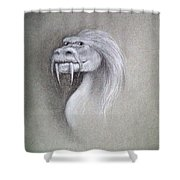 Wise Dragon Shower Curtain