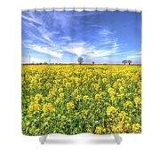 Yellow Fields Of Summer Shower Curtain