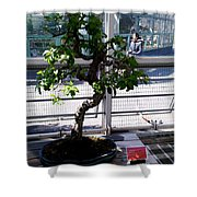 Brooklyn Garden Shower Curtain