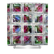 20 Deco Windows Shower Curtain