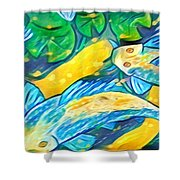 Koi Fish Shower Curtain