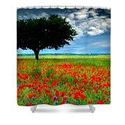 Landscape Illumination Shower Curtain